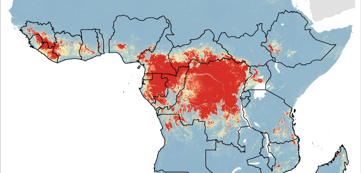 Areas where Ebola virus infection in animals is likely (colour scale ranging from red for most likely, through yellow to blue for least likely). The borders of African countries containing areas likely to be at risk are outlined.