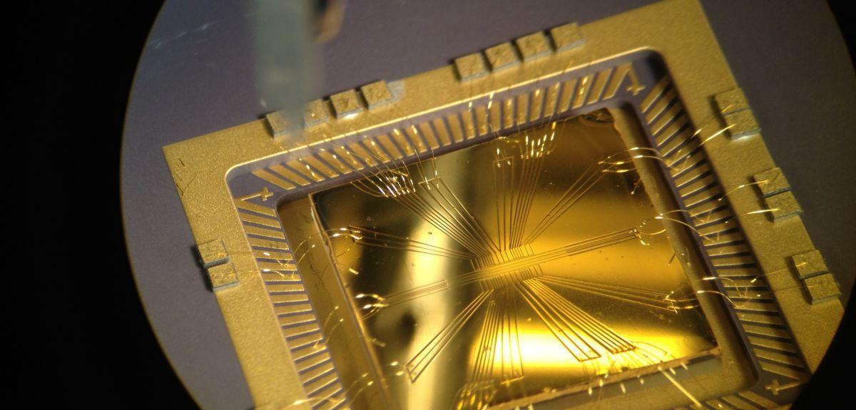 Microwave ion-trap chip for quantum computation