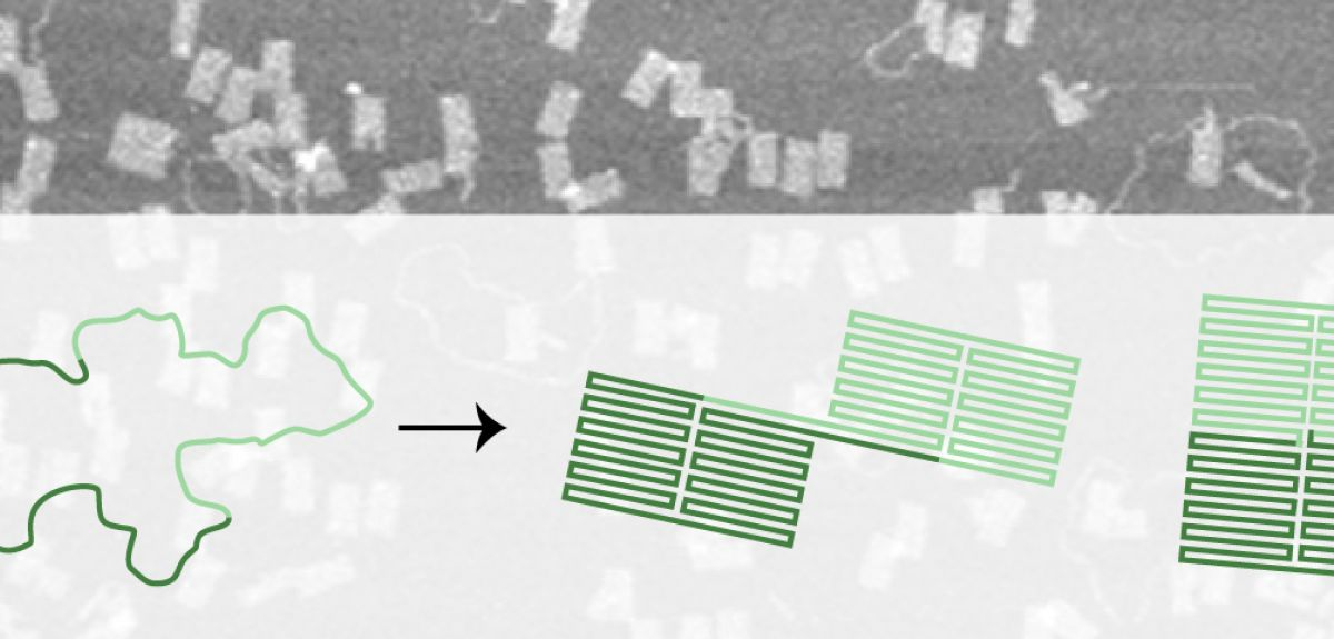 DNA origami uses short DNA 'staple' strands to bind to a longer strand.