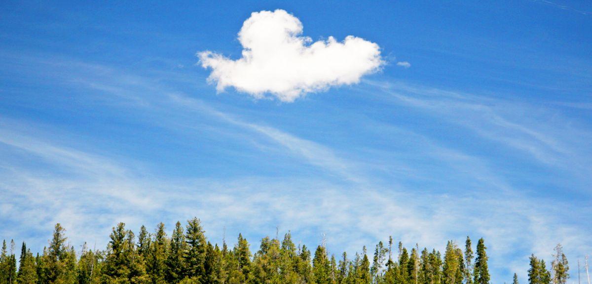 Cloud Poetry