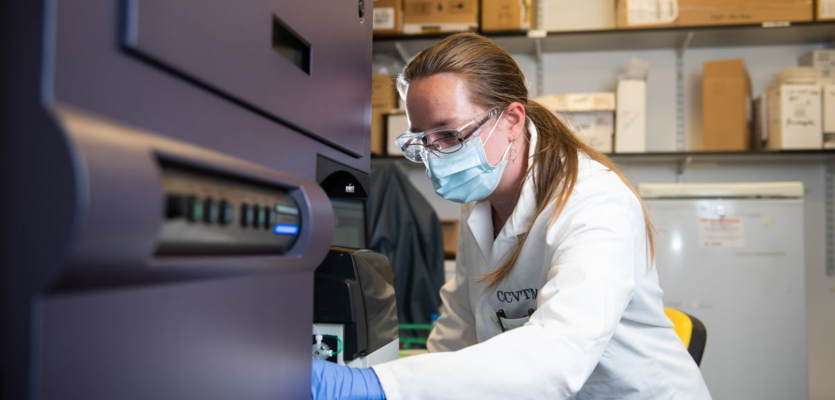 Photo   Researcher working on immunology in the lab