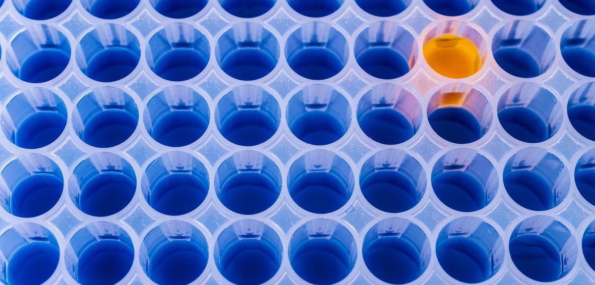 Cannabinoid research partnership
