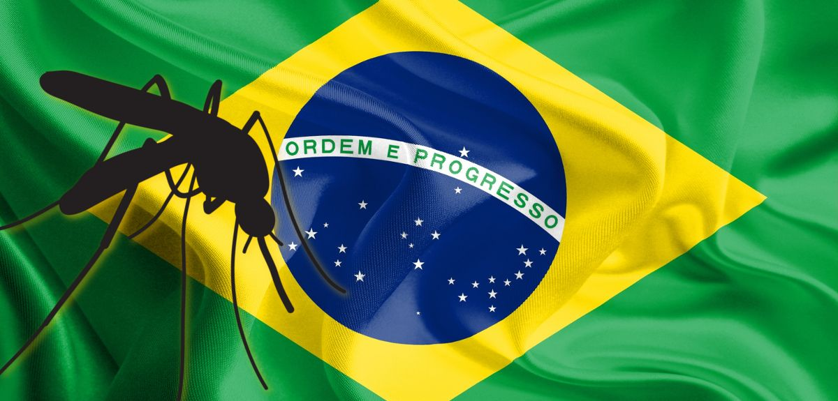 Mosquito in front of the flag of Brazil