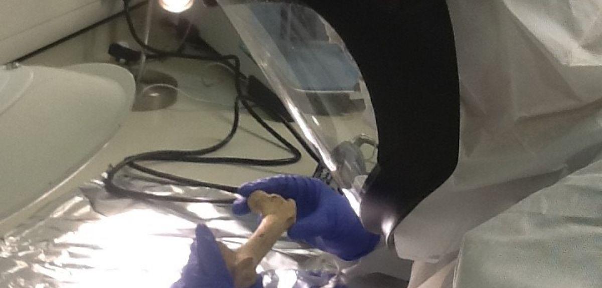 Dr Sophy Charlton taking bone samples in the PalaeoBARN Laboratory, University of Oxford