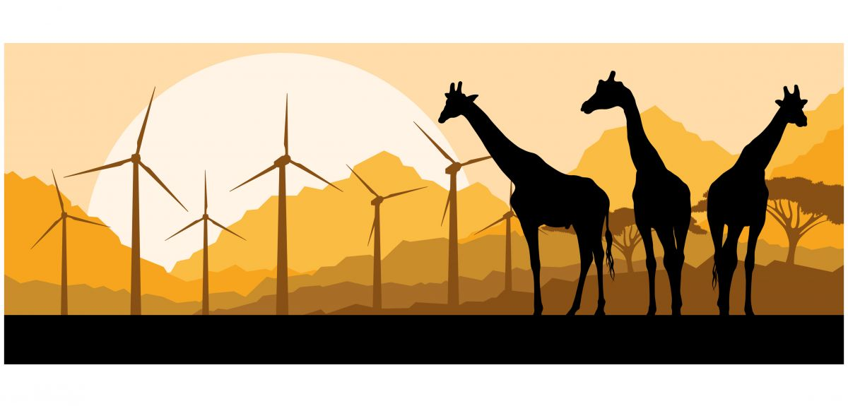 There is a prominent narrative in the energy planning community that the continent will be able to take advantage of its vast renewable energy resources and rapidly decreasing clean technology prices to leapfrog to renewables by 2030