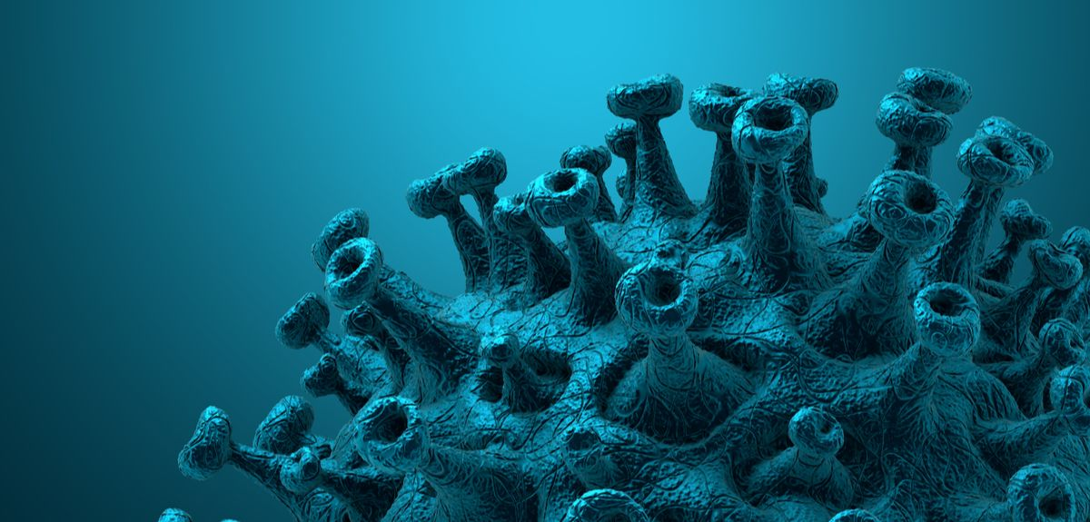 3D Rendering   SARS-CoV-2 virus cell.