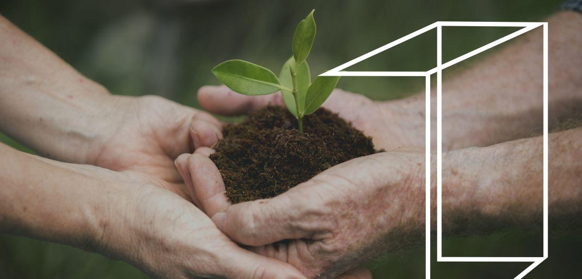 Symbol of sustainability