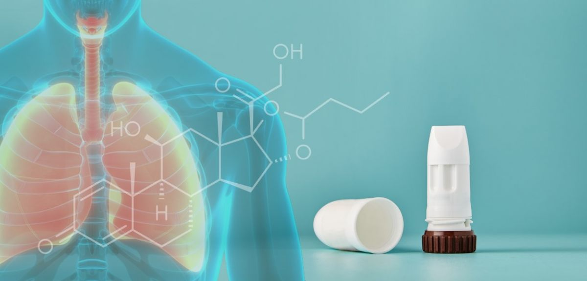Budesonide inhaler and picture of lungs