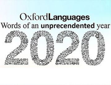 banner for 2020 words of the year