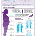 infographic highlighting ethnic inequalities in maternal mortality