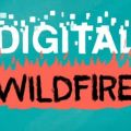 """Turquoise background with white text """"DIGITAL"""" and black text """"WILDFIRE"""" on fire"""